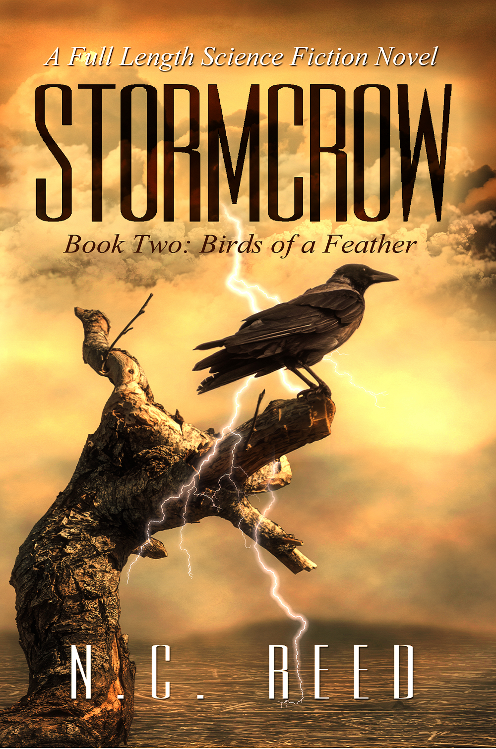 """Stormcrow: Book 2"""