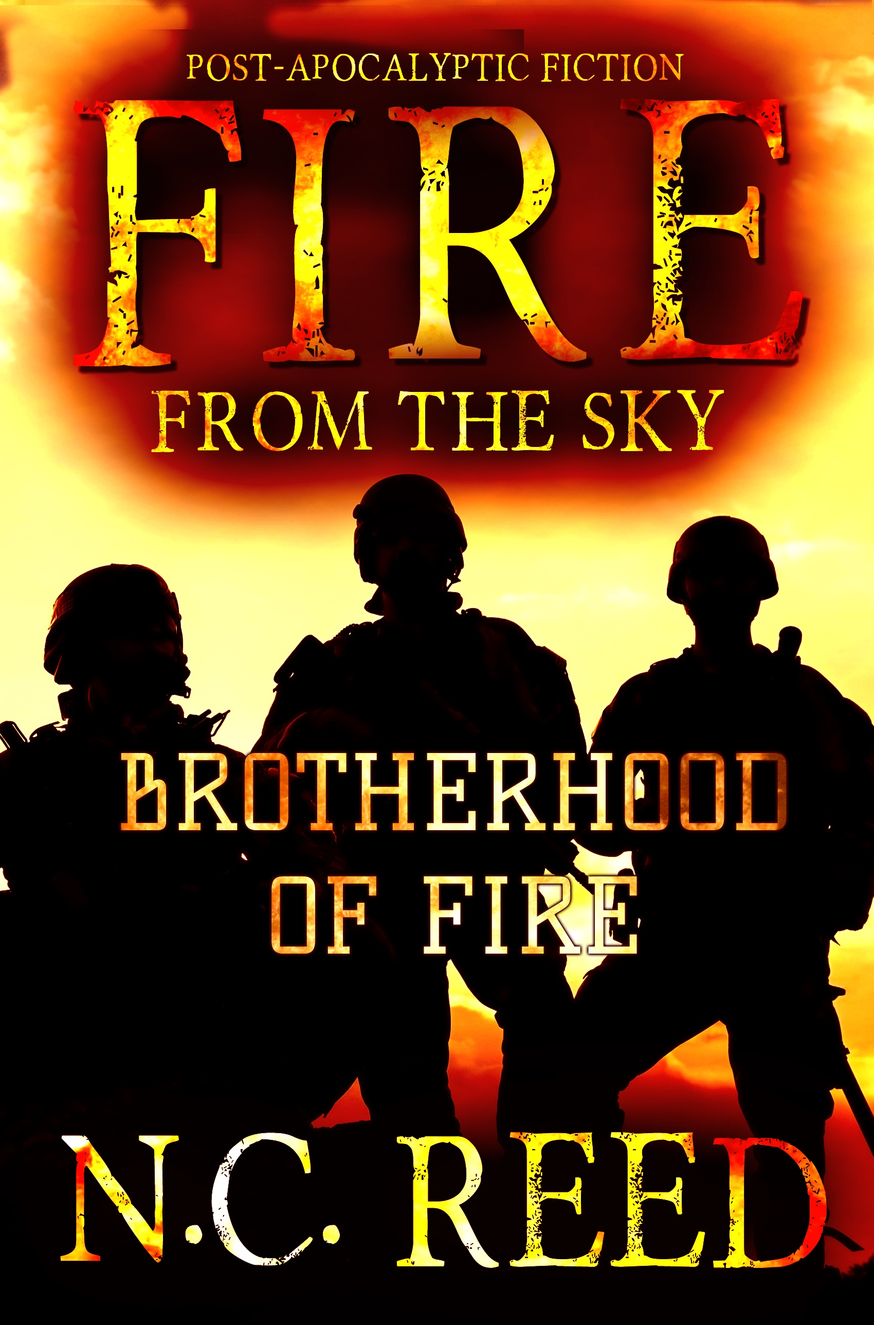 """Fire From the Sky: Book 2: Brotherhood of Fire"""