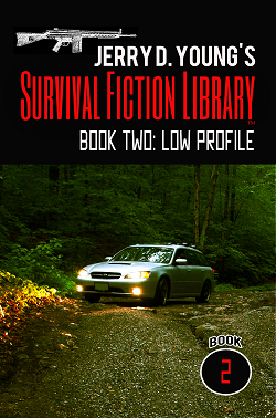 """Survival Fiction Library- Book 2: Low Profile"""